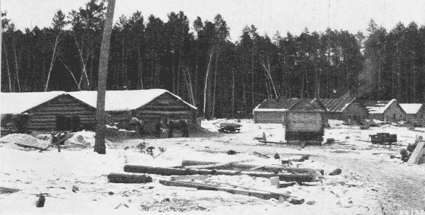 Fig. 3. Winter Logging Camp. Itasco County, Minnesota.