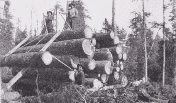 Fig. 11. Decking Logs on Skidway.