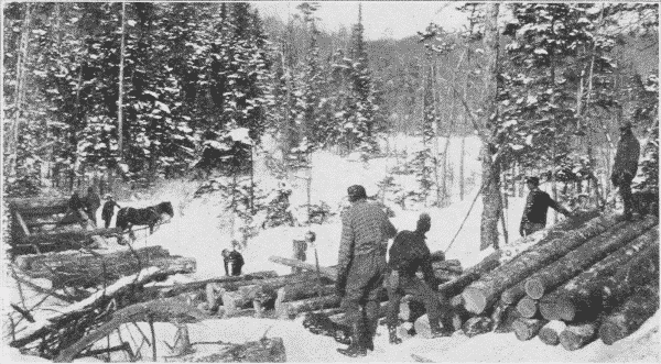 Fig. 12. Loading a Sled from a Skidway.