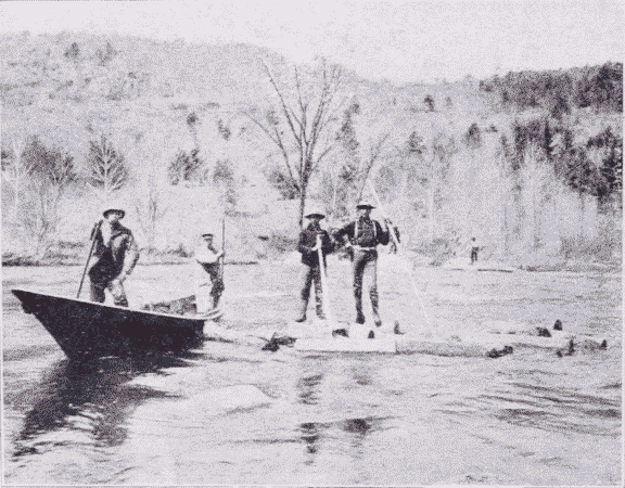 Fig. 17. Log Driving on the Ausable River.