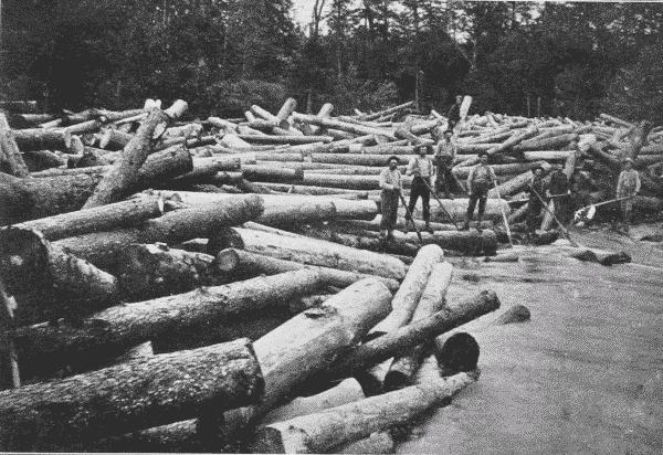 Fig. 18. Log Jam. Adirondack Mountains, New York.