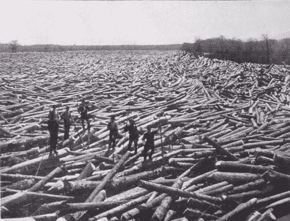 Fig. 21. Logs in Boom. Glens Falls, New York.