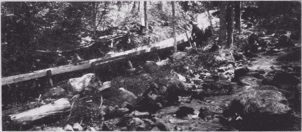 Fig. 23. Six Mile Flume. Adirondack Mountains, New York.