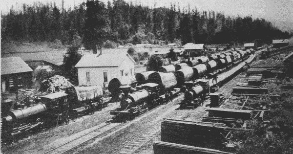 Fig. 28. Log Train, Humboldt County, California.