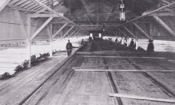 Fig. 46. Lumber Sorting Shed. Virginia, Minnesota.