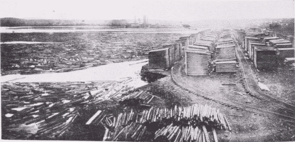 Fig. 47. Wood is carefully and regularly piled in the seasoning-yard.