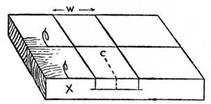 Fig. 63.—How the Timber is Marked.