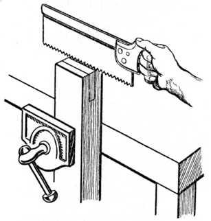 Fig. 87.—Third, or Horizontal Cut.