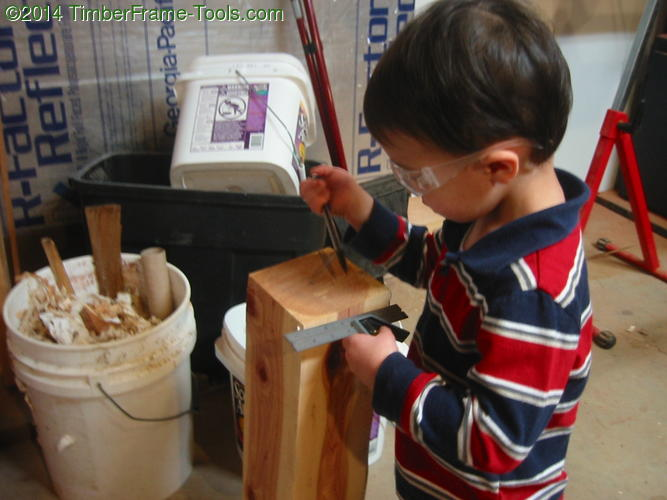 Child marking a wood.