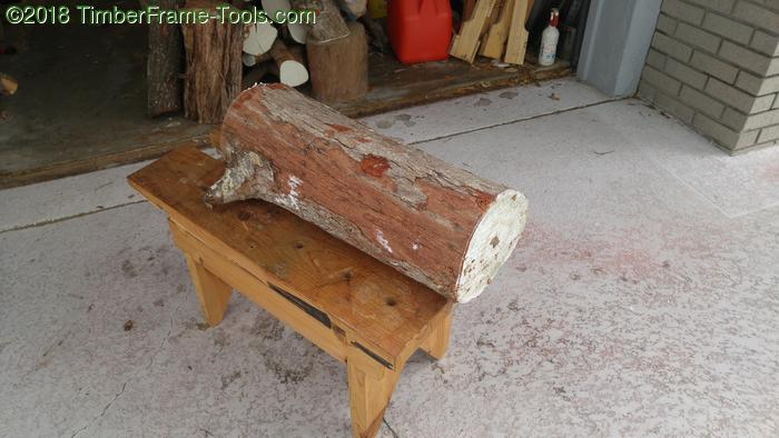 Log ready for gang sawing.